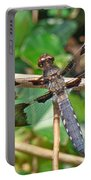 Common Whitetail Dragonfly - Plathemis Lydia - Male Portable Battery Charger