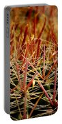 Complexity Of Nature Portable Battery Charger