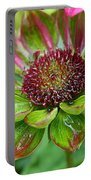 Confused Cone Flower Portable Battery Charger