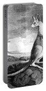 Cook: Kangaroo, 1773 Portable Battery Charger