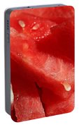 Cool Watermelon Wedges Portable Battery Charger