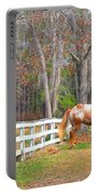 Coosaw - Outside The Fence Portable Battery Charger
