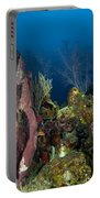 Coral Reef And Sponges, Belize Portable Battery Charger
