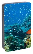 Coral Reef In Thailand Portable Battery Charger