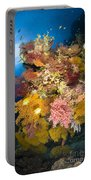 Coral Reef Seascape, Australia Portable Battery Charger