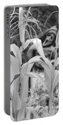 Cornstalks Black And White Portable Battery Charger
