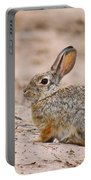 Cottontail Bunny Portable Battery Charger