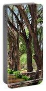 Cottonwood Desert Oasis - Utah Portable Battery Charger