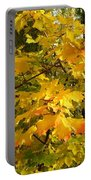 Country Color 10 Portable Battery Charger