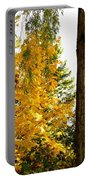 Country Color 19 Portable Battery Charger