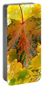 Country Color 21 Portable Battery Charger