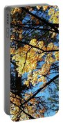 Country Color 25 Portable Battery Charger