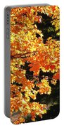 Country Color 26 Portable Battery Charger