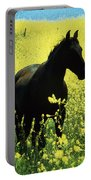 County Tipperary, Ireland Horse In A Portable Battery Charger