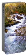 Courthouse River In The Fall Filtered Portable Battery Charger