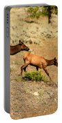 Cow And Calf Elk Portable Battery Charger