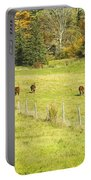 Cows Grazing On Grass In Farm Field Fall Maine Portable Battery Charger
