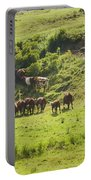 Cows Grazing On Grass In Farm Field Summer Maine Portable Battery Charger