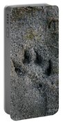 Coyote Portable Battery Charger by Susan Herber