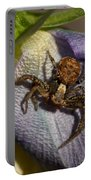 Crab Spider In A Violet Portable Battery Charger