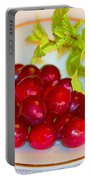 Cranberries And Mint Portable Battery Charger