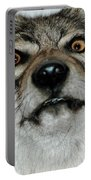 Crazy Like A Fox Portable Battery Charger