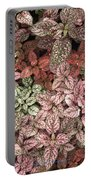 Creative Hues Of Mother Nature Portable Battery Charger