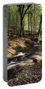 Creek In Woods, Cloughleagh, County Portable Battery Charger