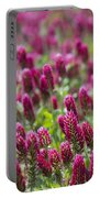 Crimson Clover In All Its Glory Portable Battery Charger