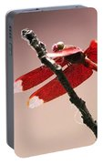 Crimson Wings At Dusk Portable Battery Charger