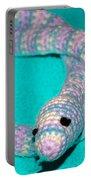 Crochet Snake In Blue Portable Battery Charger