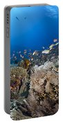 Crystal Bay Panorama Portable Battery Charger