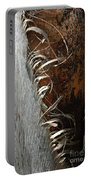 Curly Bark Of A Palm Tree Portable Battery Charger
