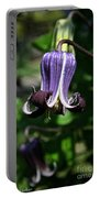 Curly Clematis Portable Battery Charger