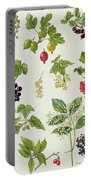 Currants And Berries Portable Battery Charger by Elizabeth Rice