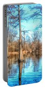 Cypress Swamp In Winter Portable Battery Charger