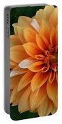 Dahlia 7001 Portable Battery Charger