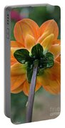 Dahlia 9001 Rearview Portable Battery Charger