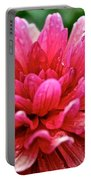 Dahlia Dew Drops Portable Battery Charger