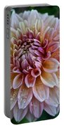 Dahlia Dewdrops Portable Battery Charger