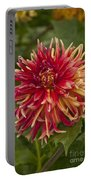 Dahlia In Its Prime Portable Battery Charger