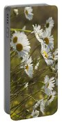 Daisies Blowin In The Wind Portable Battery Charger