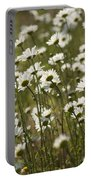 Daisy Fields Forever - Alabama Wildflowers Portable Battery Charger