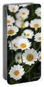 Daisy In A Field Portable Battery Charger
