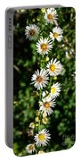 Daisy Production Line Portable Battery Charger