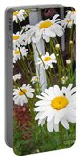 Daisy Visitor Portable Battery Charger