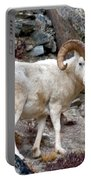 Dall's Sheep Portable Battery Charger