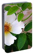 Dancing Flora Portable Battery Charger
