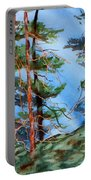 Dancing Light And Mossy Field Portable Battery Charger