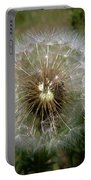 Dandelion Going To Seed Portable Battery Charger